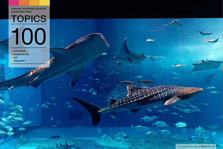海洋博公園・沖縄美ら海水族館を超楽しむ100のこと